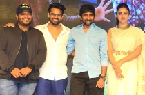 Winner Movie Pre Release Function Event