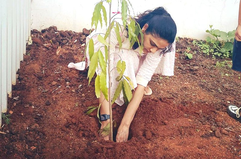 Allu Arjun's Wife Sneha Reddy Planting Tree