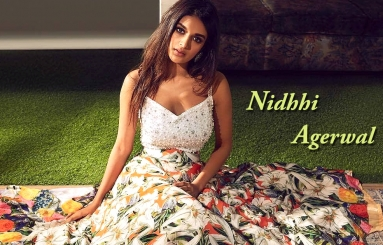 Nidhhi Agerwal Wallpapers