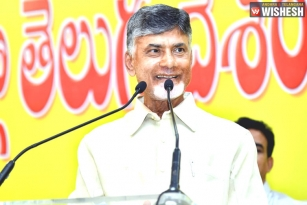 Chandra Babu Reviews 100 Days Rule of YS Jagan