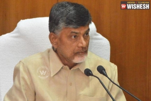 Chandrababu Naidu To Make 60 Mini Districts In AP