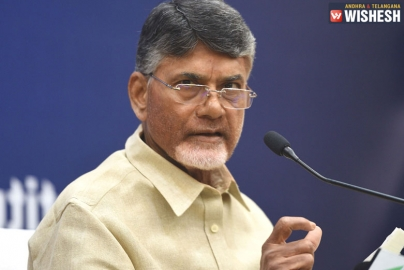Chandrababu Naidu To Pick Out His Candidates Carefully