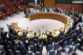 Only China Backed Pakistan at UNSC Meeting on Kashmir: Report