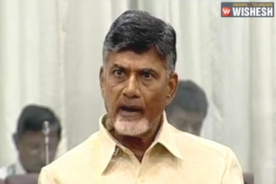 AP CM Blames Collectors, SPs For Chittoor Accident