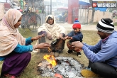 Weather, North India, dense fog makes life miserable in north india, India