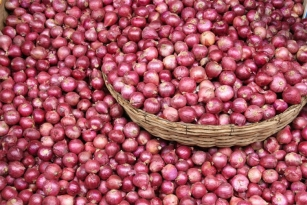 Farmer earns Rs 1 for 100 kg onions