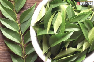 The Five Amazing Health Benefits Of Curry Leaves