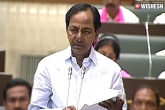 Telangana Chief KCR Announces Budget Of The Year