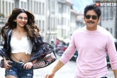 Nag's Manmadhudu 2 Seals an Interesting Deal
