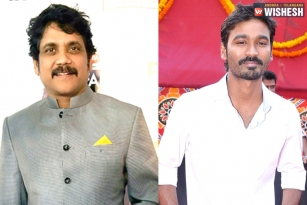 Nag And Dhanush To Team Up For A Multi-Starrer?