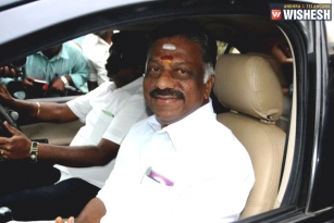 Panneerselvam On AIADMK Merger