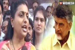 Roja says 'TDP Looted Everyone in the State'