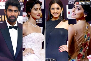 SIIMA 2017: Stars Who Walked Away With Top Honors