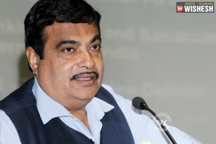Want a lush garden? Nitin Gadkari's advice: Water it with urine