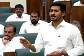 YS Jagan Responds About TDP Scams in AP