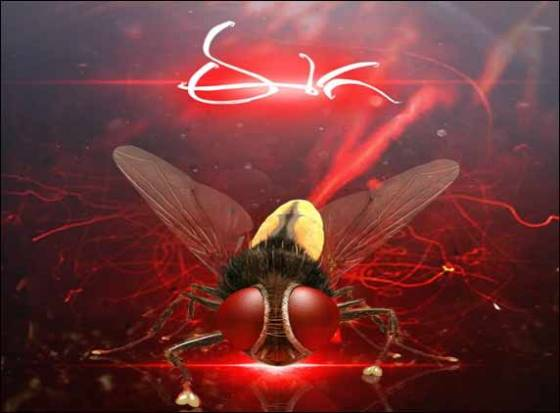 The 3 D &#039;Eega&#039;...