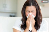 dust allergy, dust allergy, 3 simple tips to get rid of dust allergy, Health tips