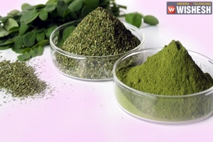 Useful Herbs To Counter Cancer Pain