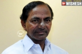 Government should not command, but support- KCR
