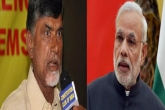 AP special status: TDP, BJP declare war on each other
