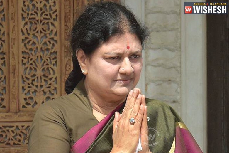 Sasikala Writes Letter to PM Modi, Asks to Promulgate Ordinance on Jallikattu