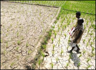 India could face drought this year