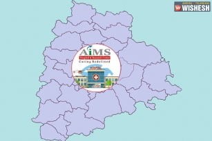 Central Cabinet Approves AIIMS In Telangana