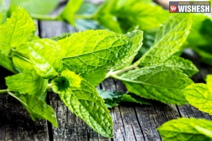 Seven Health Benefits of Mint Leaves