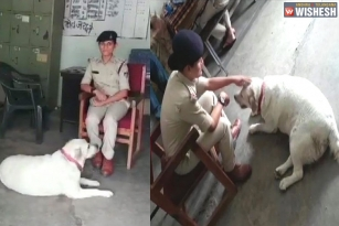 MP Cops Taking Care of a Pet After Owner Arrested in a Murder Case