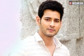 Mahesh Babu, Mahesh Babu latest updates, india s top cinematographer for mahesh s next, Cinema