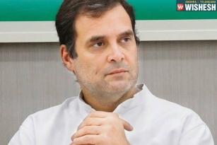 Rahul Gandhi Keen to Step Down: Congress in Search for a Successor