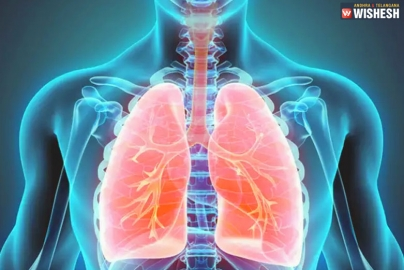 Signs to Know About Lung Cancer