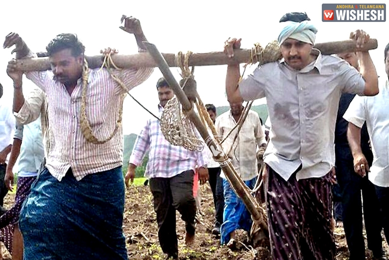 Extending support to farmers, Mangalagiri MLA ploughs field