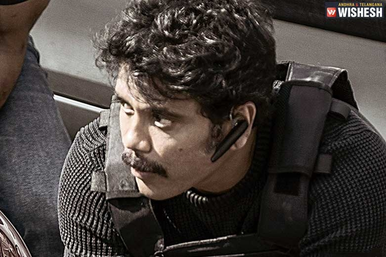 Nagarjuna's Wild Dog Rights Sold for a Record Price